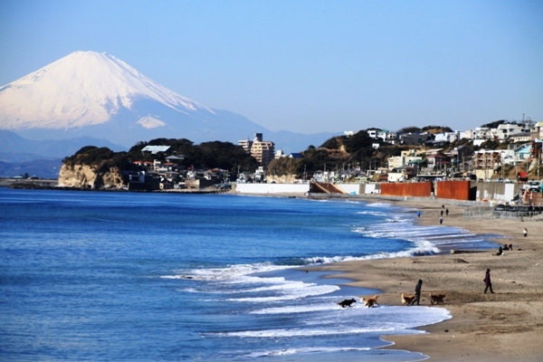aa江の島05.jpg