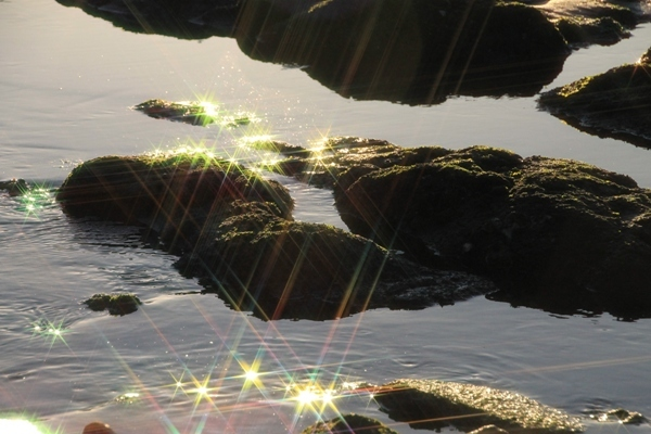 aa江の島13.jpg