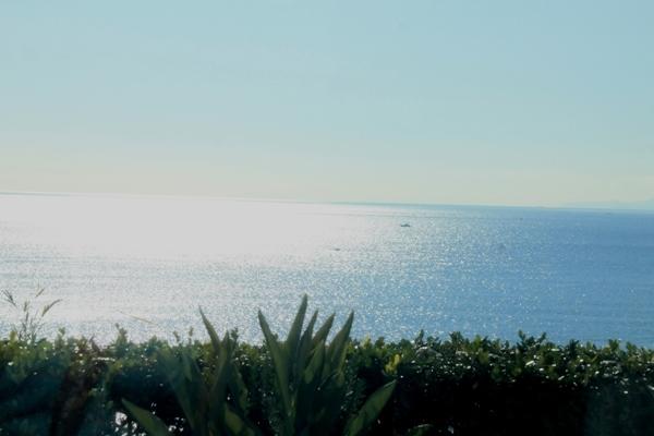 aa江の島b01.jpg